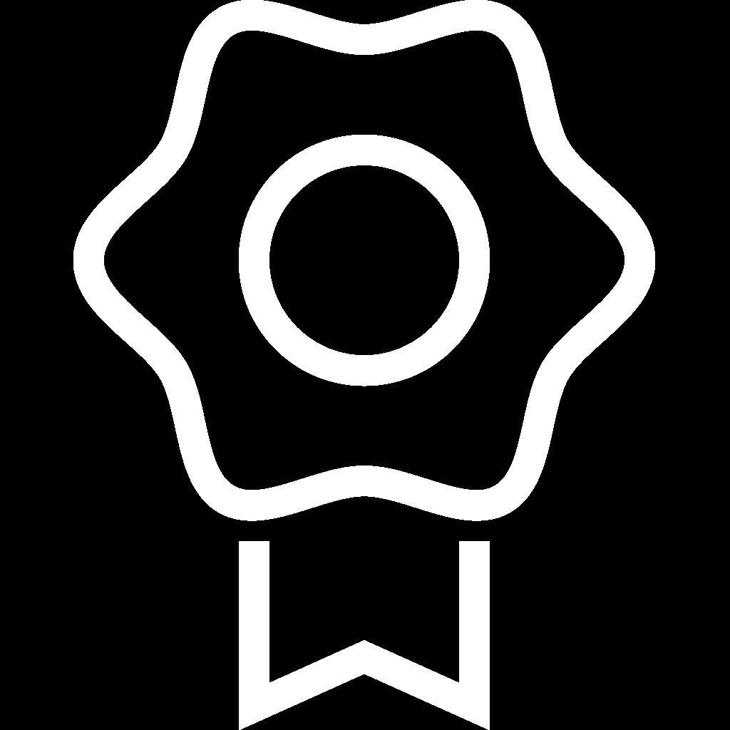 badge dt academy
